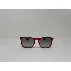 Ray Ban RB4187 Unisex sunglasses